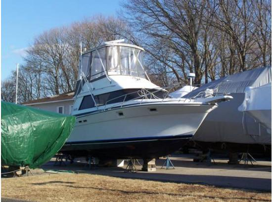 1988 Luhrs Tournament Sportfish
